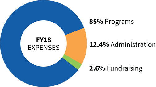 84.8% of our expenses are devoted to the prevention of blindness and malnutrition